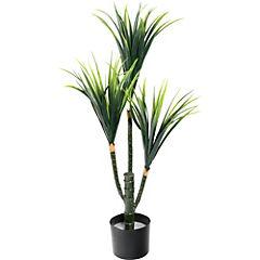 Planta Yuca 90 cm verde