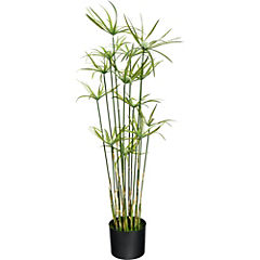 Planta Cipero 91 cm verde