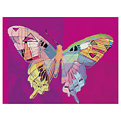 Canvas decorativo Neo Butterfly 80x60 cm
