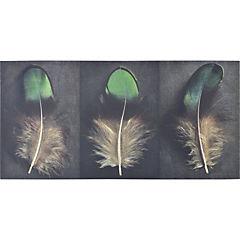 Canvas decorativo Pavo Real 100x50 cm