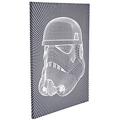 Canvas Storm Trooper wire 60x80 cm