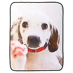 Manta para perro 76x102 cm poliéster blanco