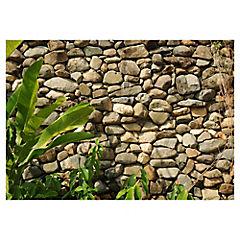 Fotomural Piedra Natural 400x280 cm