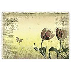 Papel fotomural Tulipas Primaverales 400x280 cm