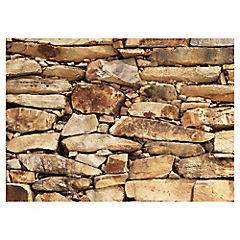 Papel fotomural Muro piedra gres 200x280 cm