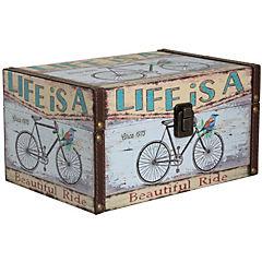Caja Bicicleta L 26x18x14 cm