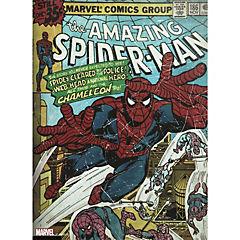 Canvas Spider Man 57x77 cm