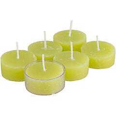 Set de tealights verbena fresias 6 unidades Verde claro