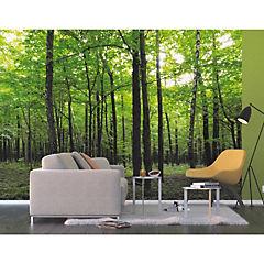 Fotomural Bosque verde 3,60x2,54 m
