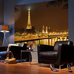 Fotomural Paris 2,54x1,84 m