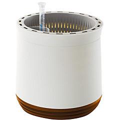 Purificador de aire y oxigenador alemán (tipo macetero) para 20 m2