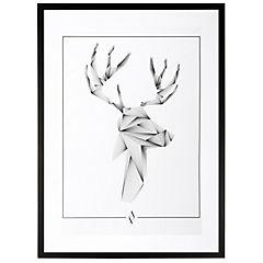 Cuadro Enmarcado Linedeer 70x50 cm