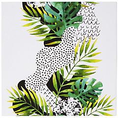 Canvas Tropical II 50x50 cm