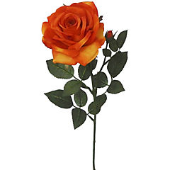Vara rosa Anny 70 cm naranjo
