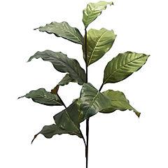 Hoja Magnolia 91 cm verde