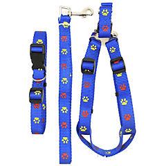 Pack collar+correa+arnés l  azul