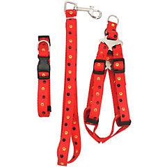 Pack collar+correa+arnés m  rojo