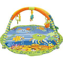 Gimnasio peces musical y luces