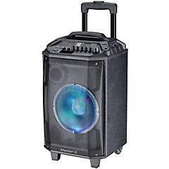 Parlante portátil karaoke 8