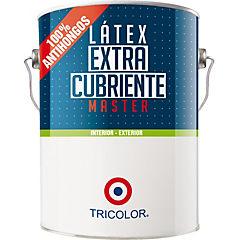 Látex master  rojo colonial 1 gl