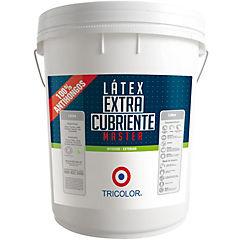 Látex master  ocre 4 gl plástico