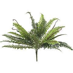 Helecho peineta 58 cm verde