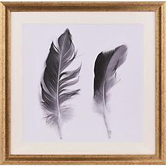 Cuadro dos plumas 50x50 cm