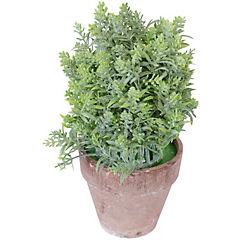 Arreglo Topiary 20 cm surtidos