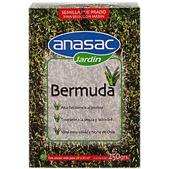 Semilla Prado Bermuda 250grs