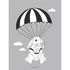 Poster 40x30 cm conejo gris