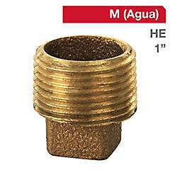 Tapa tornillo HE bronce 1