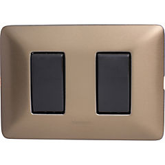 Interruptor doble 9/15 10 A gris