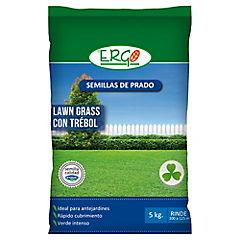 Semilla prado Lawn Grass con trébol 5 kilos