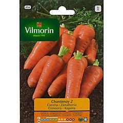 Semilla zanahoria chantenay 5 gr sachet