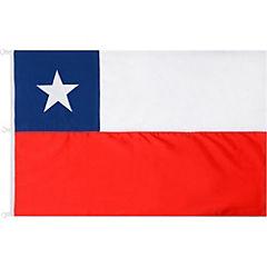 Bandera seda poliéster 90X135 cm