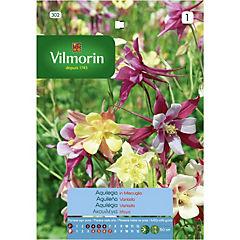 Semilla flor Aguileña 5 gramos
