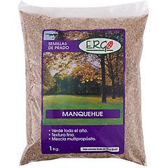 Semilla Prado Manquehue 1,0kg