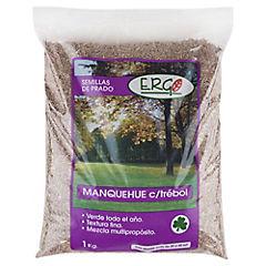 Semilla de Pasto Manquehue con trébol 1 kilo