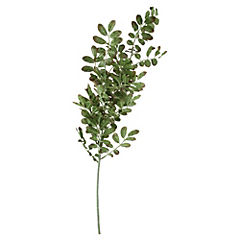 Vara Verde Olivo L273