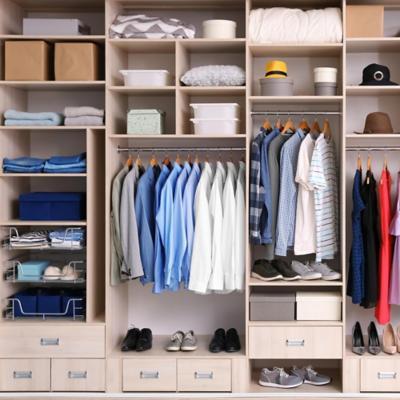 Organizaci n de closet for Organizadores para closet