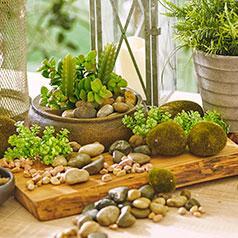 Accesorios de jardín
