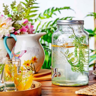 Jarros y purificadores