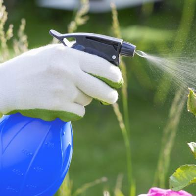 Insecticidas y repelente