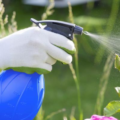 Insecticidas y Repelentes