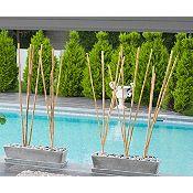 Paquete bambú flores secas