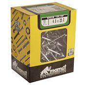 Remache alm t/pop 4.8x25 100und 18RTP-P