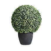 Mini Ball Boxwood 50 cm