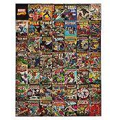 Canvas Comics 60x80cm