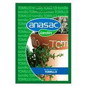 Hierba aromática Tomillo