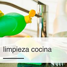 Productos de limpieza hogares brillantes sodimac for Productos limpieza cocina